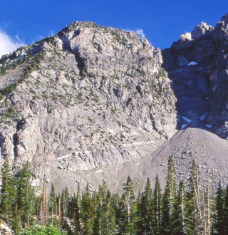 Albion Basin in Little Cottonwood Canyon