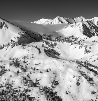 Come see why Alta has been loved since 1938