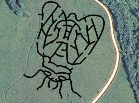 The 2021 McCloud Prairie Maze celebrates the Brood X cicada!
