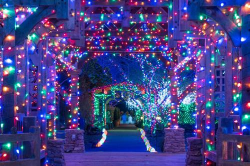 Winter Lights at the North Carolina Arboretum 2017