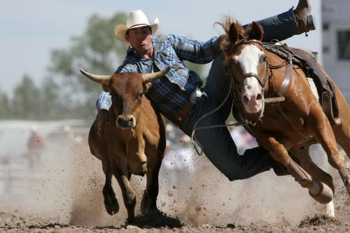 Rodeo Excitement