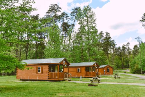 Deam Lake State Recreation Area Cabins