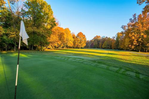 Green at the Wooded View Golf Course