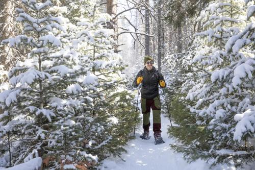 Man snowshoeing between snowy trees in Wyoming's Snowy Range