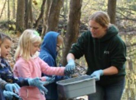 Stewardship Mornings at Harris Nature Center - Image