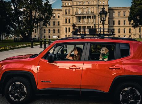 Dog - Car - Capital - Travel