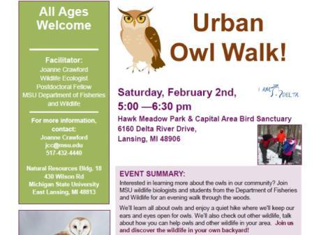 Urban Owl Walk Hawk Meadow Park