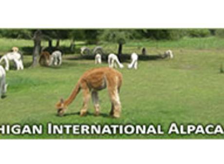 Alpaca Fest