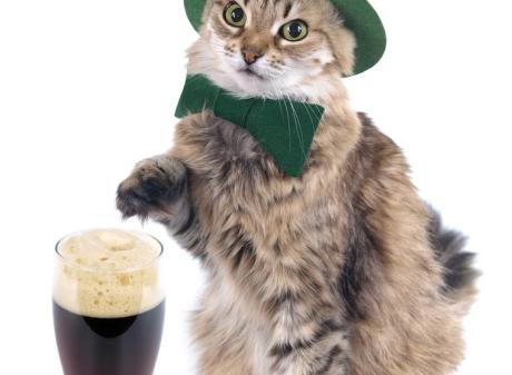 Crunchy's St. Patrick's Day