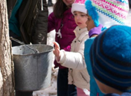 Fenner Maple Syrup Festival