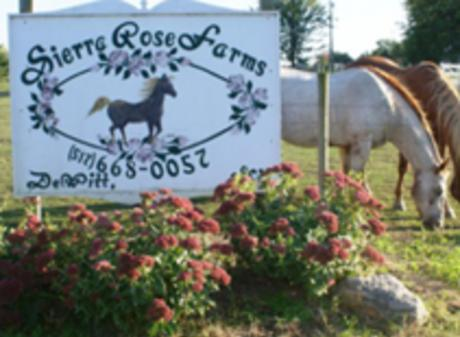 SierraRose Farms & Healing Hearts With Horses