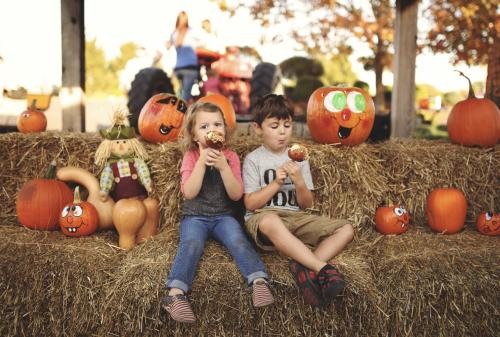 Kids sitting on bales of hay eating candy apples at Joe Huber's Farm