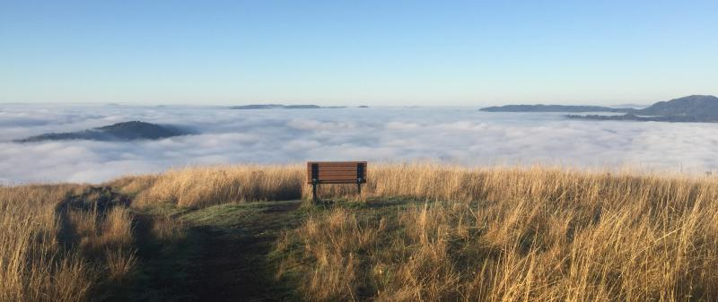 Mount Pisgah in the Fog by Melanie Griffin