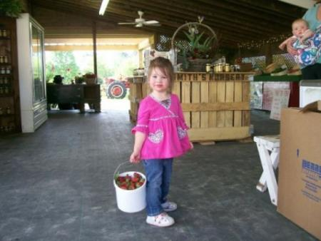 Smith's Strawberry Farm, a great place for picking strawberries in Benson, NC.