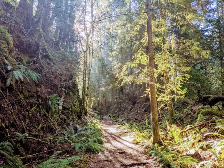 Foothills Trail - Melmont Ghost Town hike