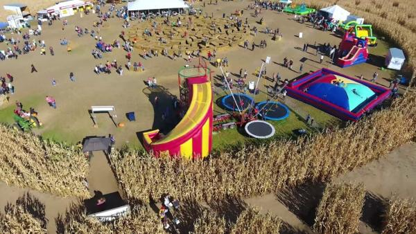 Aerial view of harvest festival grounds
