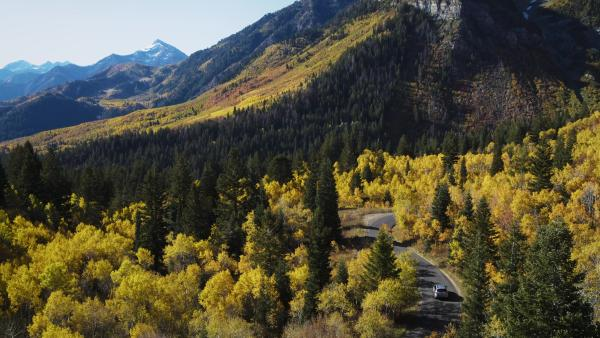Alpine Loop Fall Colors