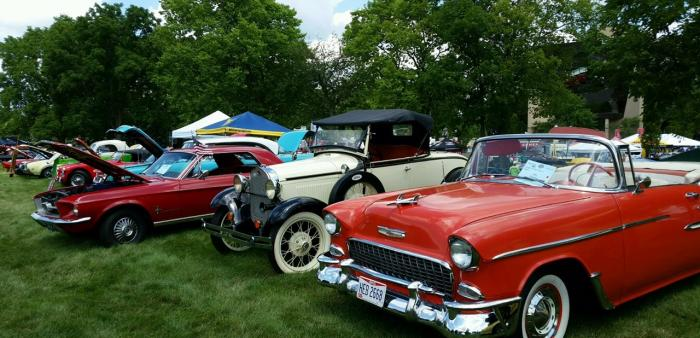 Vintage cars lined up on grass.