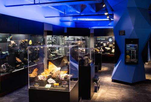The Asheville Museum of Science is a fully-interactive science experience in downtown Asheville, N.C.