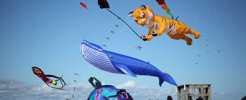 Fall Events in Kure Beach | Cape Fear Kite Festival