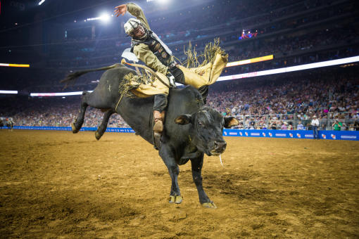 A Houston Livestock Show and Rodeo show and concert