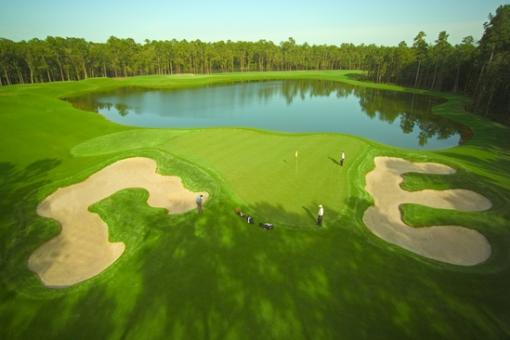 Top 12 Golf Courses in Houston