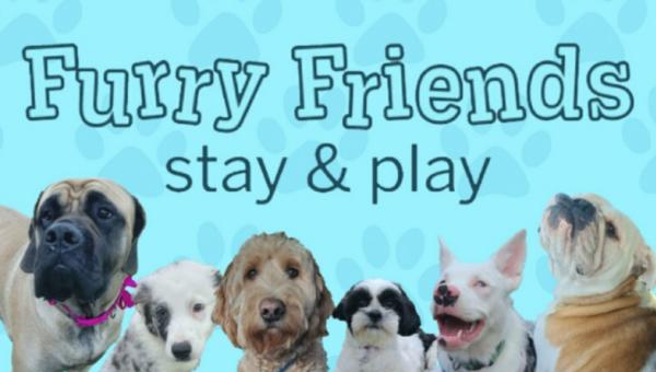 A great place for pets, Furry Friends Stay & Play offers a range of services, including an indoor dog park!