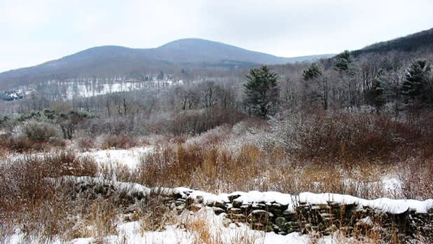 A snowy landscape as seen from the Catskill Scenic Trail