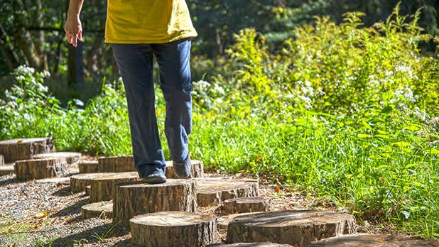 Letchworth Autism Nature Trail_log stump steps@NYSParks