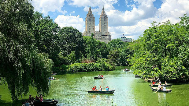 centralpark_@nyc_pics_and_tips-Instagram_618x348