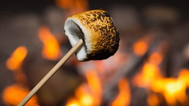 A toasted marshmallow over a campfire