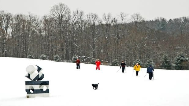 5 people cross-country ski at Art Omi as a dog runs near a sculpture