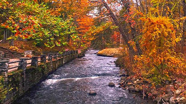 saratoga spa state park_@laurenleren-Instagram_618x348