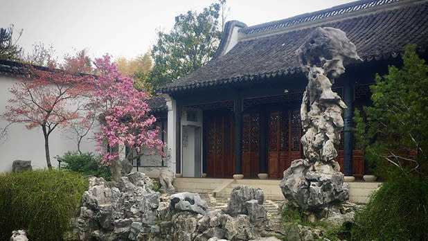 Landscaping including cherry blossoms and sculpture