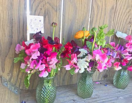 Vibrant fresh flowers