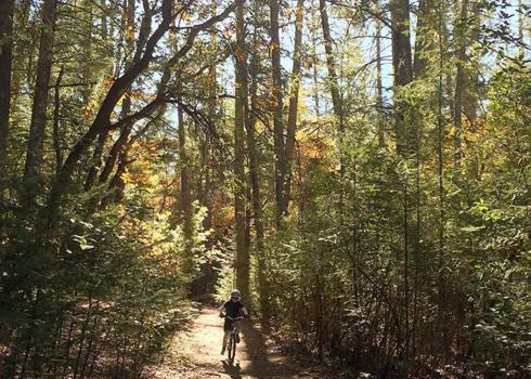 Las Posadas State Forest