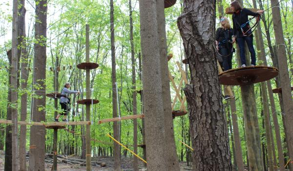 People on the outdoor adventure recreation facility TreeTrekkers