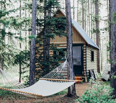 Cabin in the woods with a hammock in the trees