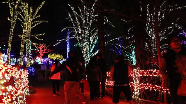 Christmas Light Dispalys For 2020 Christmas Evein Va Christmas Light Shows   Bull Run Festival & More | Fairfax County, VA