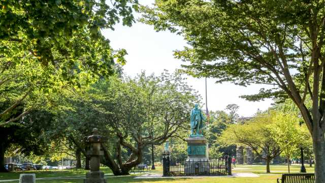 Self-Guided Tree Walks, Touro Park