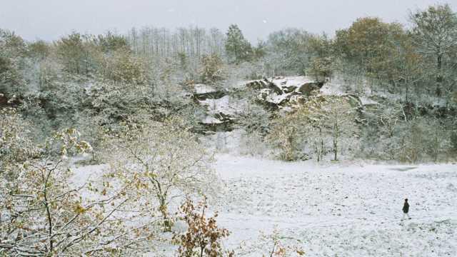 Winter walk in Ballard Park, Newport
