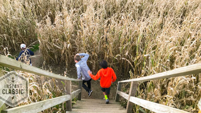 Escobar's Corn Maze, Portsmouth