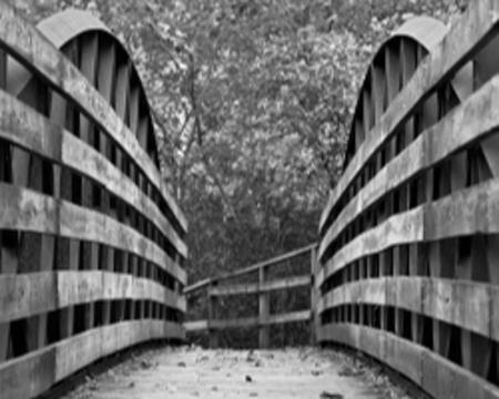 White Lick Creek bridge in Ellis Park