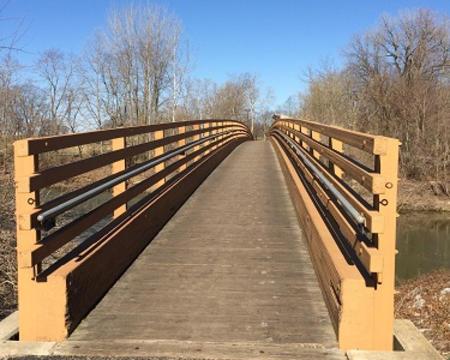 Hummel Park Red Maple Path Bridge