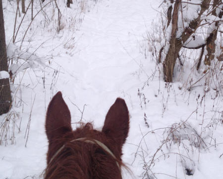 Winter horseback ride at Natural Valley Ranch