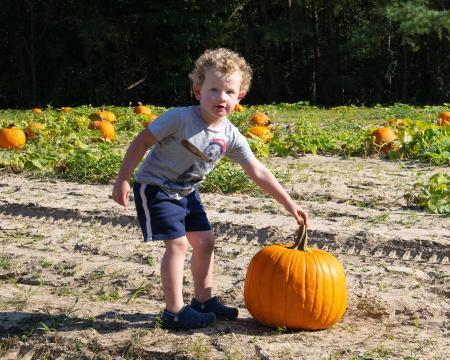 Smith's Farm Pumpkin Picking in Benson, NC.