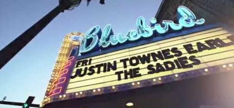 Live Music - Denver's Music Scene