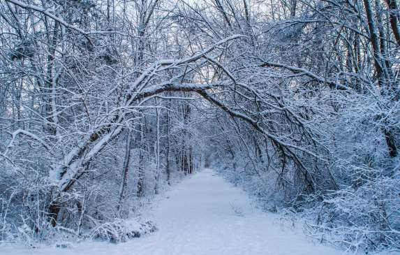 The Rail Trail Covered in Snow