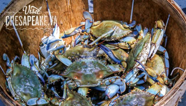 Chesapeake VA Bay Blue Crabs in a basket puzzle photo