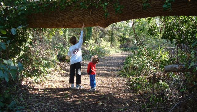 Spring at the Chesapeake Arboretum